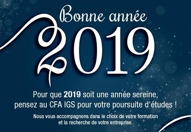 Cfa Formation En Apprentissage A Paris Cfa Igs